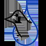 PGN Logo website